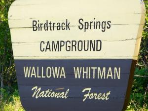 Birdtrack Springs